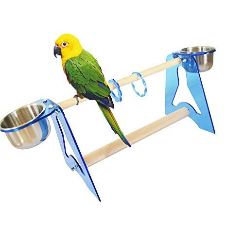 Parrot Stands Acrylic Bird Cage Table Stands Training Tripod Hamster Cage Stands with Stainless Steel Food Containers(Stand Frame Height 7.09in, Rod Length 11.82in) (L - http://petsboutique.org/parrot-stands-acrylic-bird-cage-table-stands-training-tripod-hamster-cage-stands-stainless-steel-food-containersstand-frame-height-7-09in-rod-length-11-82in-l/