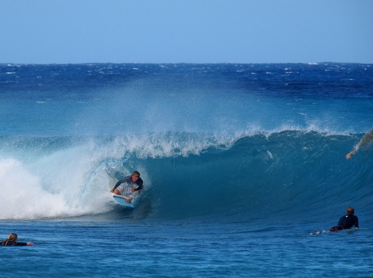 Catch the waves at Zed's Surfing Adventures in Barbados!
