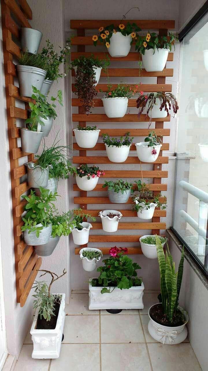 Trennung von Holzbalken und Aufhängen durch Blumentöpfe oder Blumentopf, der vom Boden zur Trennung klettert – Angela İsli