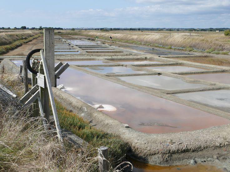 L'île d'Olonne, Vendée - Marais salants | Le sel est à l'origine de l'Ile d'Olonne, ancien village de sauniers.