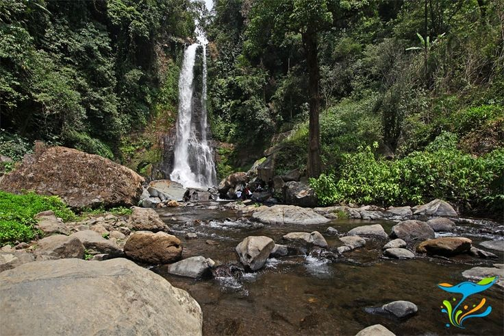 Air Terjun Gitgit yang terletak di antara kawasan pegunungan Bedugul dan Kota Singaraja di pesisir utara Bali ini merupakan salah satu air terjun tertinggi di Bali. Sementara itu di kawasan yang sama juga ada sejumlah air terjun lain. More info: http://fantasticbali.com/tempat-wisata/air-terjun-gitgit.htm