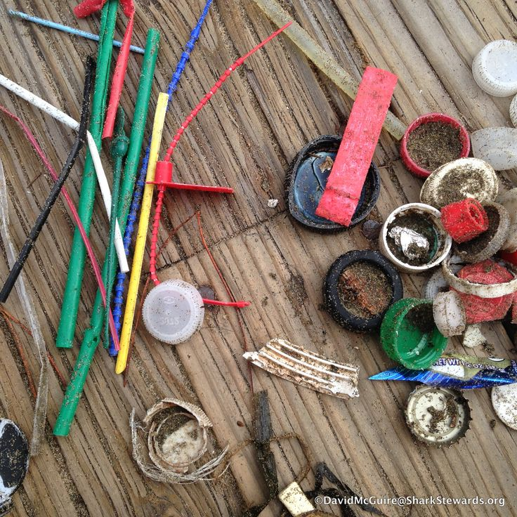 Not Just Butts hit the Bay. Plastic on our beaches @NationalParks @AquaticPark