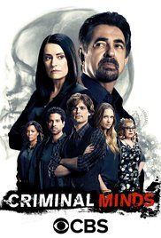 Criminal Minds IMDB 8.2 The cases of the FBI Behavioral Analysis Unit (BAU), an elite group of profilers who analyze the nation's most dangerous serial killers and individual heinous crimes in an effort to anticipate their next moves before they strike again.