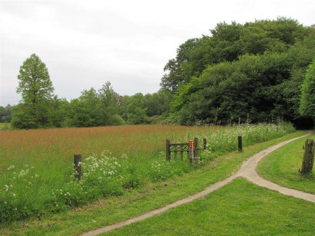 Foto's - Landschap - De Lutte, wandelpad - Koos Roggeveld - Natuurfotografie