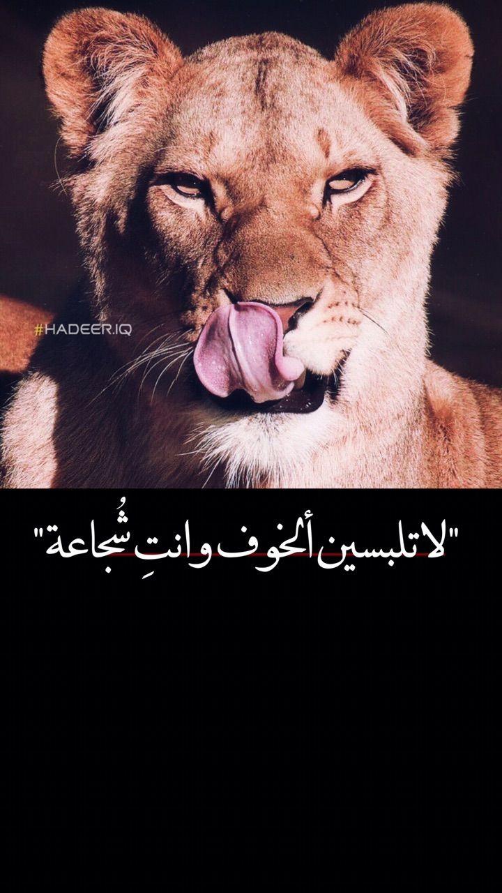 لبوه اسد قوه شجاعه Lion انثى Morning Quotes Images Bff Pictures Book Cover Art