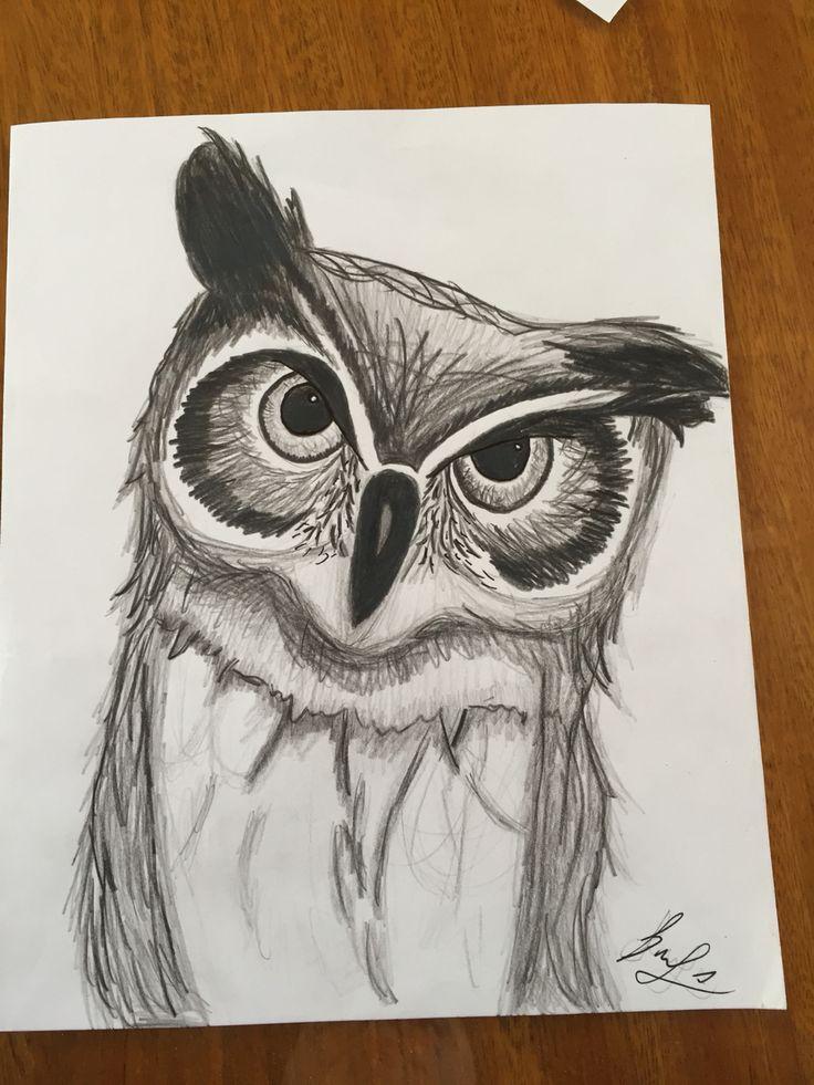 Dibujo de búho a lápiz  Buho