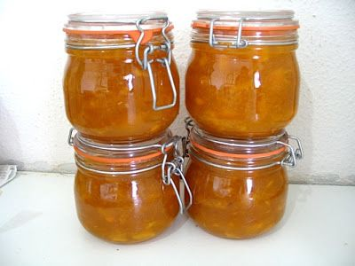 Thermomix Mango Chutney Recipe