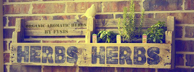 www.efysis.com - Greek Organic Aromatic Herbs