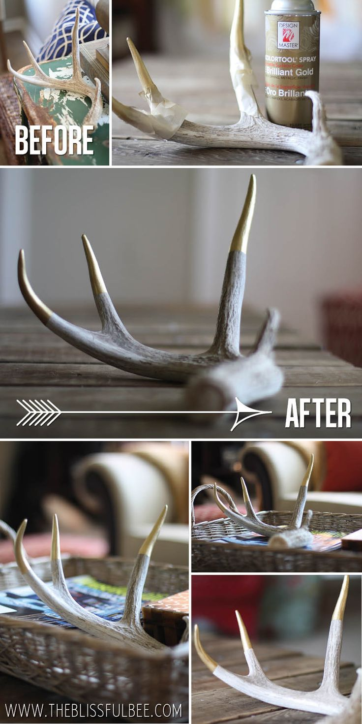 Easy way to update antlers! Adding a gold accent on the ends - Visit The Blissful Bee blog to find out how!