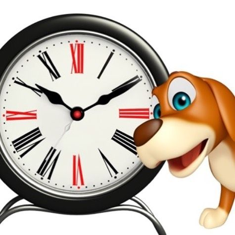 Are you a shift worker a night owl or just plain busy? We have good news for you! Pawssum is extending our service time! We have been able to provide Vet services to your home from 9am to 9pm 7 days a week but now residents of East Sydney and selected suburbs in Western Sydney can have a Vet come to their home from 9am to midnight 7 days a week! Click the link in the bio to learn more or make a booking!