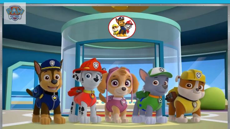 Nickelodeon Games to play online 2017 ♫PAW Patrol Academy♫ Kids Games