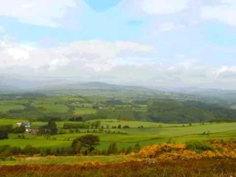 Londonderry Air (Danny Boy) Irish Folk Song (Celtic harp & tin whistle)