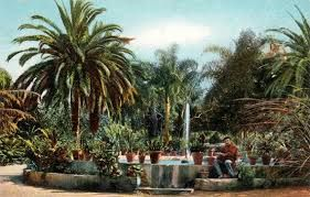 jardin botanico tenerife puerto de la cruz