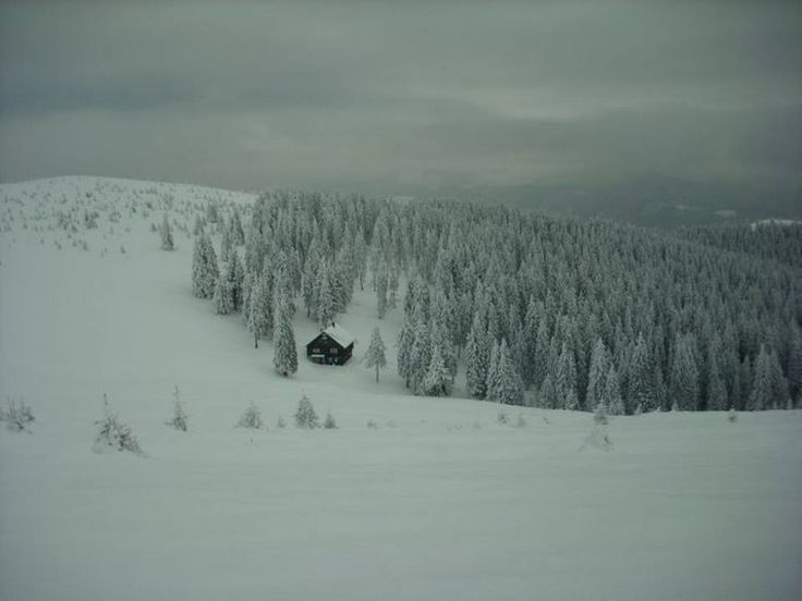 cabana prejba(1630m)-muntii lotrului-sibiu
