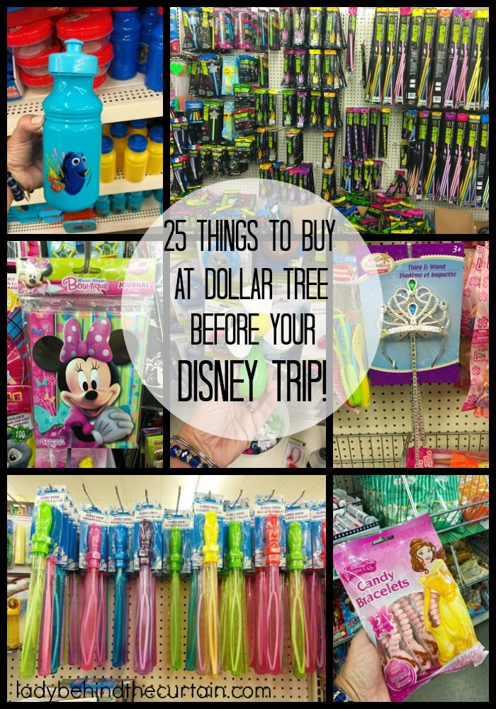 25 Things To Buy At Dollar Tree BEFORE Your Disney Trip |  Whether you plan on v… – Lady Behind The Curtain