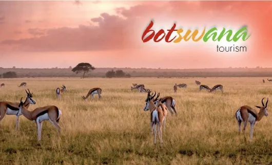 Congratulations to Botswana Tourism on winning the 2017 +World Travel & Tourism Council #TourismforTomorrow Destination Stewardship Award!