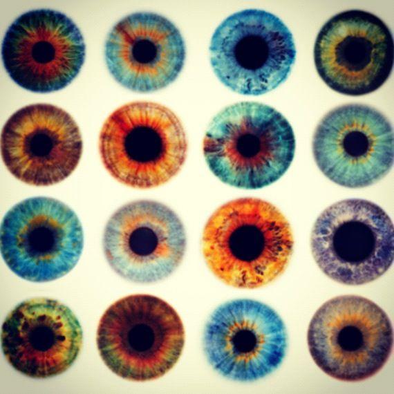 eyes / eyes / eyes