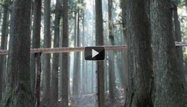 gaaf filmpje! Een balletje maakt muziek in het bos