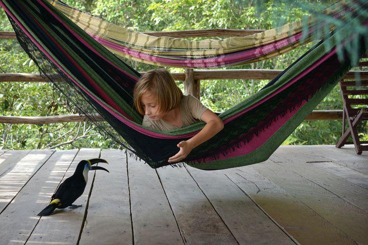Onko mitään järkeä viedä lapset lomalle Amazonille?  Siellähän on sietämättömän kuuma. Ja joenvarren sademetsät ovat täynnä kuolemantauteja levittäviä hyttysiä, myrkkyhämähäkkejä ja -käärmeitä ja ties minkälaisia vatsapöpöjä ja muita eksoottisten tautien aiheuttajia. Tuskin siellä uskaltaa syödä tai juodakaan mitään. Ei kai sinne ainakaan pikkulasten kanssa kannata matkustaa?  http://www.exploras.net/matkablogi/30122015