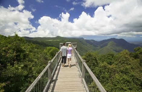 Skywalk at Dorrigo National Park Rainforest Centre, NSW, Australia. #travel #bucketlist