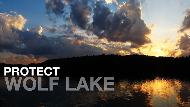 Wolf Lake by Rob Nelson. A compilation of photos and videos from my time in and around Wolf Lake, Temagami, Canada: home to the world's largest stand of old growth Red Pine. It is under renewed threat from mining as leases are coming up for another 20 year renewal.