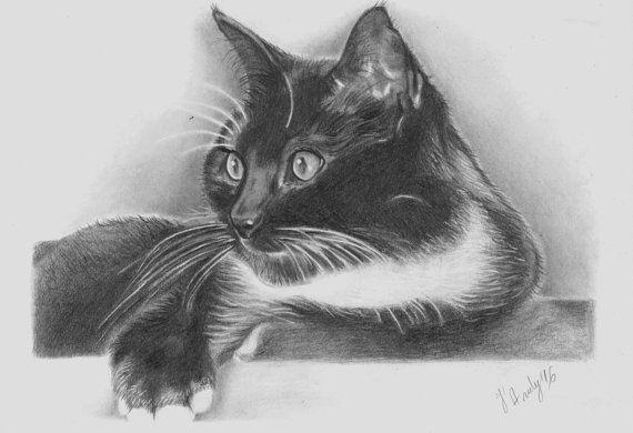 Cat portrait custom drawing Kitty skatch drawing by JandyArtStudio