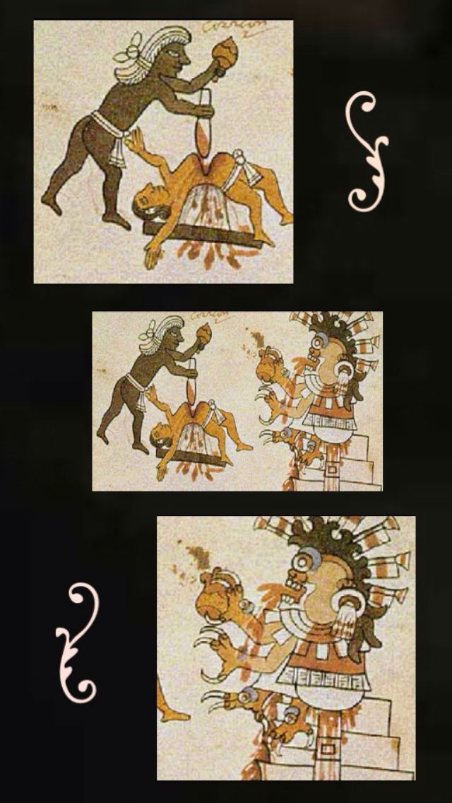 Although it has been known for years the the Aztecs hosted numerous bloody sacrificial festivals, in 2004, a grisly discovery was made outside of modern day Mexico City. Numerous decapitated and mutilated bodies of both humans and animals shed some light on just how horrific the rituals could get.