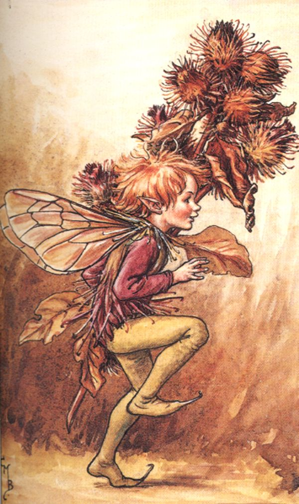 The Song Of The Burdock Fairy, Flower Fairies of the Winter:   Hear how the Burdockis laughing and mocking:  Try to get rid of me, try as you will,  Shake me and scold me, I'll stick to you still,  I'll stick to you still!