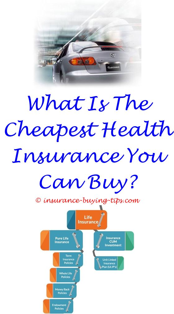60 Year Car Insurance Quote Term Life Insurance And Term Life Mesmerizing Travel Life Insurance Quotes