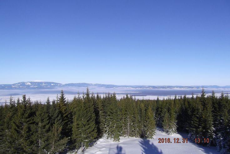 View from Skorušina