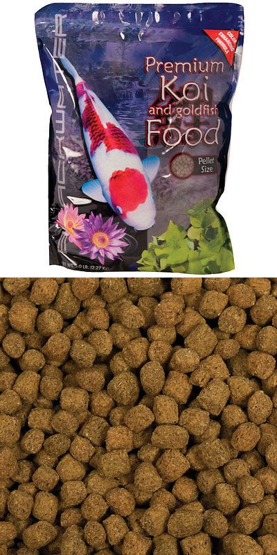 Food 20759: Blackwater Creek Color Enhancing Koi And Goldfish Food -> BUY IT NOW ONLY: $38.99 on eBay!