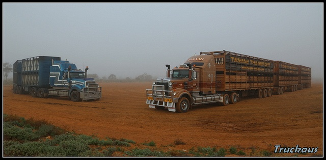 All sizes | Trans Australia Mack Titan & Tanami Transport Kenworth C509 on a foggy morning at Port Augusta, via Flickr.