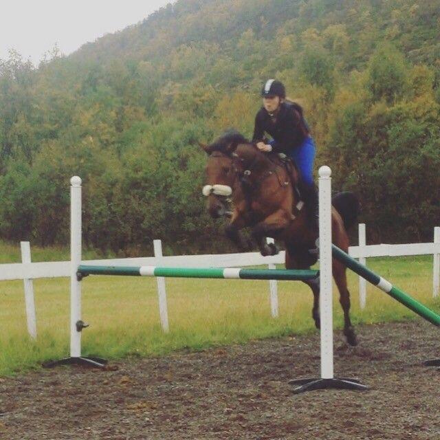 (13) FINN – Hest gies bort