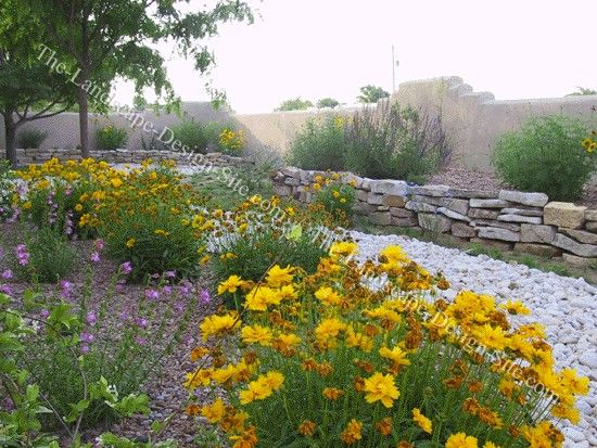 Xeriscaping with dry stack rock retaining wall backyard for Cheap landscaping ideas