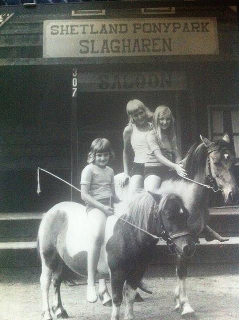 Een dagje uit naar Shetland Ponypark Slagharen