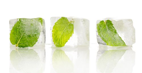 How to Freeze Herbs!  Now you can enjoy the taste of fresh herbs and benefit from their antioxidant properties.