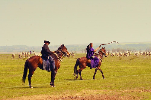 Hungarian Cowboys or Csikós on the Great Plain, Hungary, Europe