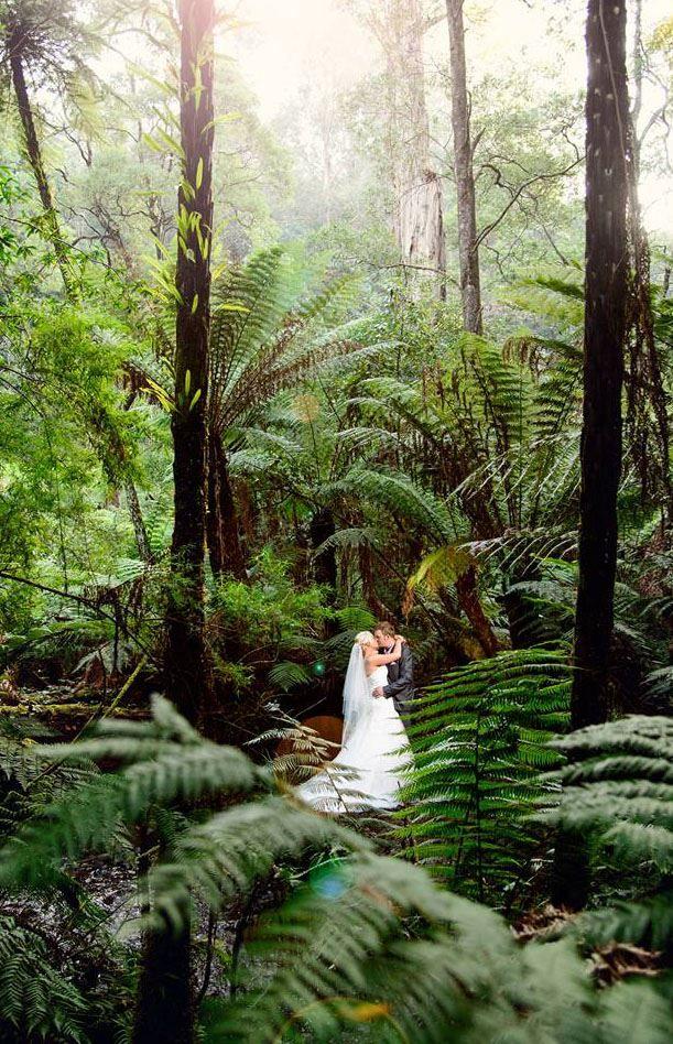 Wedding Venues Yarra Valley / Dandenong Ranges Lyrebird Falls Receptions