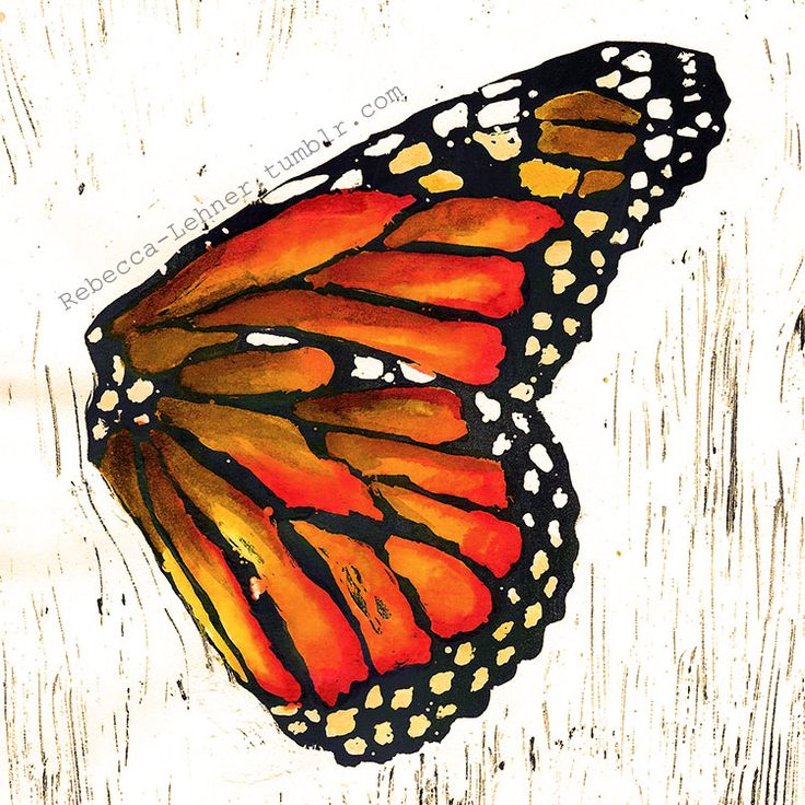 Monarch butterfly wing - watercolor and acrylic - Rebecca Lehner