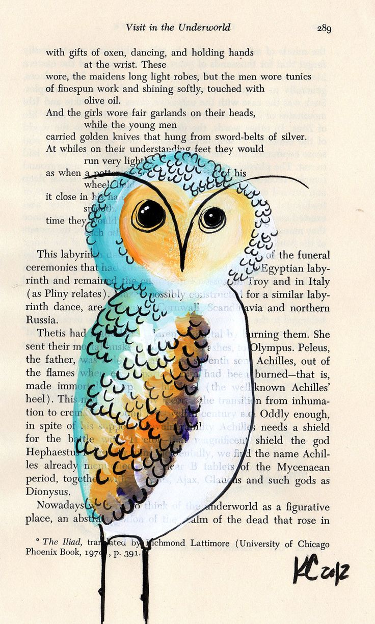 'Retro Owl' by Kelly Cook