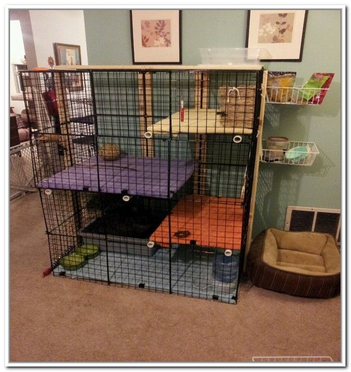 Hamster Cage At Walmart Com Hamster Cage Pet Mice Small Pets