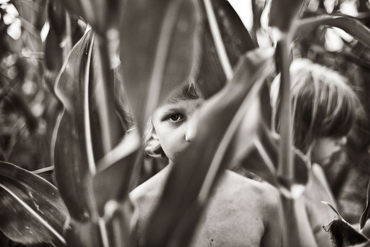 children-photography-summertime-izabela-urbaniak-28