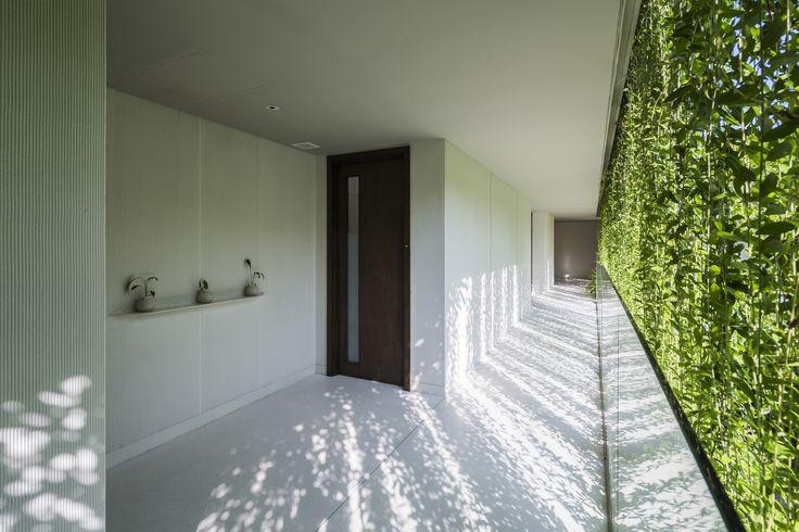 Cortina verde - Galeria de Spa Naman / MIA Design Studio - 16