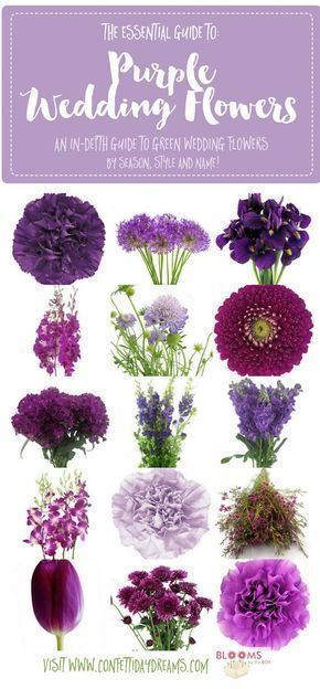 Get purple wedding flower names and ideas with pics + seasons. Save the purple flower guide: http://www.confettidaydreams.com/purple-wedding-flowers-names/ #purplewedding #weddingflowers