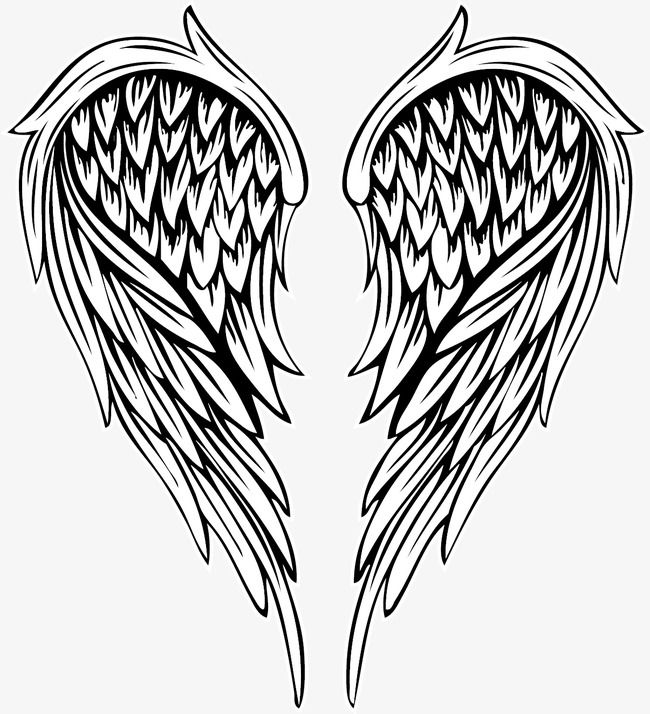 Vector Painted Feather Angel Wings Vector Hand Painted Angel