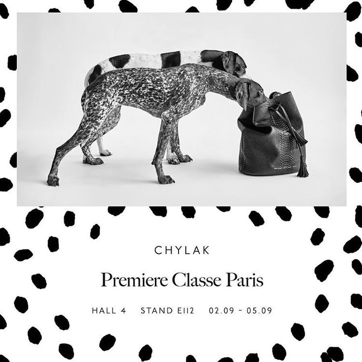 We're in Paris! Showing our collection at @premiereclasseparis trade show ☆ #premiereclasse #paris #premiereclasseparis #chylak #chylakbags