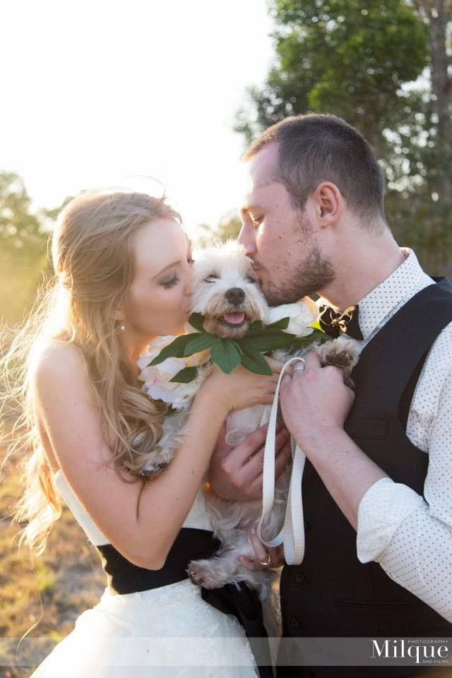 Having our Furchild as the flower girl at our wedding was so special to us! She is such a wonderful part of our family so how could we not have her in the bridal party! #milque #wedding #flowergirl #verawang