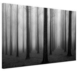 """""""In a Fog"""": zwart wit foto schilderij bos. Fotografie: Jochen Bongaerts"""