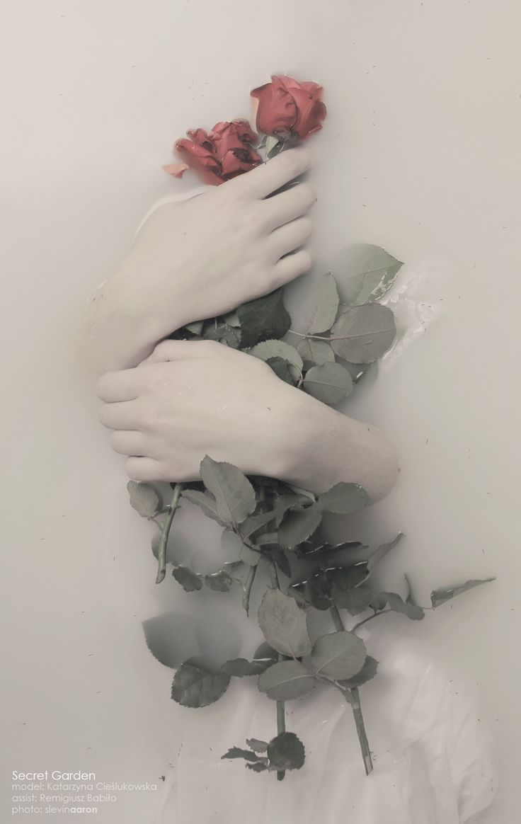s l e v i n a a r o n . p h o t o g r a p h y holding flowers