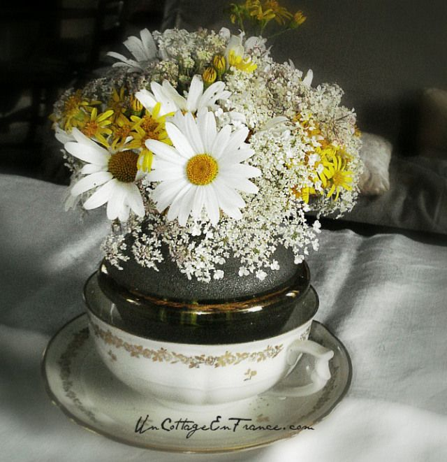 Un Cottage En France - le bouquet rond de marguerites